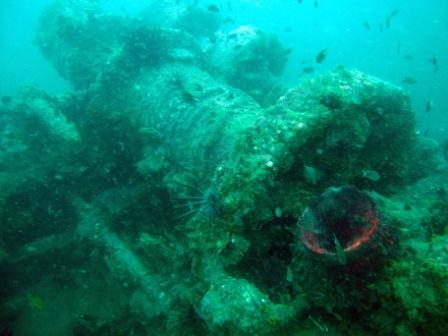 Petchburi Bremen Ship wreck foreward winch. Photo by Charlie Frost at Pattaya Dive Center Feb 2012