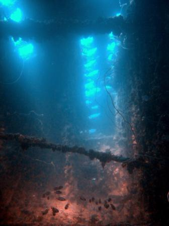 light shinning through into the hardeep shipwreck - photo by Charlie Frost
